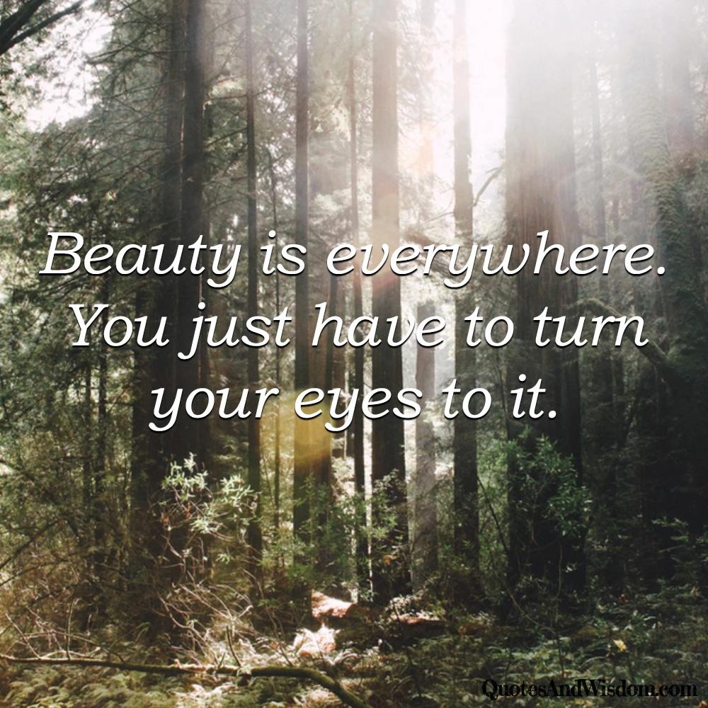 Quotesandwisdomcom Quote Beauty Is Everywhere